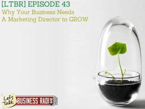 WHY Your Business Needs a Marketing Director to GROW
